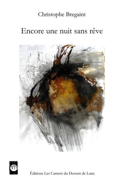 ChristopheBregaint-Couv.jpg