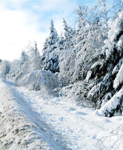 http://www.francopolis.net/images2/Dec2016_voyage-hiver.jpg