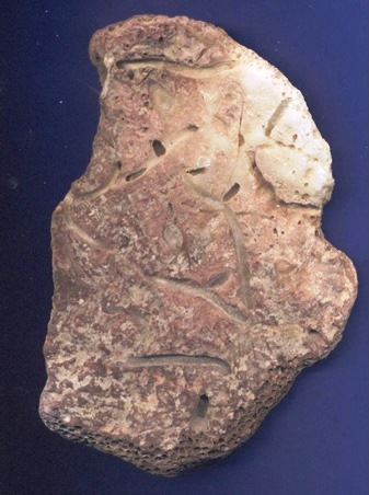 L'Ancêtre, sur fond bleu 9