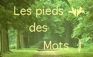 http://www.francopolis.net/images2/piedstitle.jpg